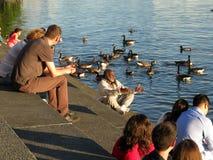 Απόλαυση του απογεύματος στα βήματα Στοκ Εικόνες