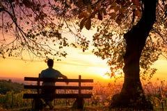 Απόλαυση του ηλιοβασιλέματος σε έναν πάγκο στοκ εικόνα με δικαίωμα ελεύθερης χρήσης