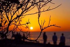 Απόλαυση του ηλιοβασιλέματος, όρμος της Λα Χόγια, Καλιφόρνια Στοκ Εικόνες