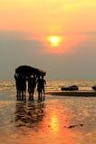 απόλαυση του ηλιοβασι&la Στοκ εικόνα με δικαίωμα ελεύθερης χρήσης