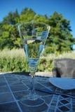 απόλαυση του κρασιού Στοκ εικόνες με δικαίωμα ελεύθερης χρήσης