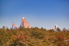 Απόμακρη άποψη βουνών της Fitz Roy, Aisen Χιλή Στοκ φωτογραφία με δικαίωμα ελεύθερης χρήσης