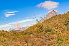 Απόμακρη άποψη βουνών της Fitz Roy, Aisen Χιλή Στοκ φωτογραφίες με δικαίωμα ελεύθερης χρήσης