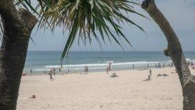 Απόμακρη πιθανότητα του κύριου παραδείσου surfers παραλιών που πλαισιώνεται από τις εγκαταστάσεις pandanus στοκ φωτογραφίες με δικαίωμα ελεύθερης χρήσης