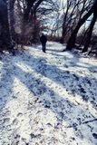 Απόμερος περίπατος στα ξύλα με το χιόνι στοκ φωτογραφίες