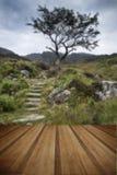 Απόμερο δέντρο στο τοπίο βουνών και μονοπατιών το καλοκαίρι με Στοκ φωτογραφία με δικαίωμα ελεύθερης χρήσης