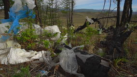 Απόρριψη απορριμάτων στη δασική, περιβαλλοντική ρύπανση, δάσος, δέντρα απόθεμα βίντεο