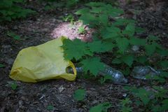 Απόρριψη απορριμάτων στο δάσος στοκ φωτογραφία με δικαίωμα ελεύθερης χρήσης