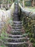 Απότομα σκαλοπάτια πετρών με τους τοίχους που ενώνουν τη διάβαση επαρχίας στοκ φωτογραφία με δικαίωμα ελεύθερης χρήσης