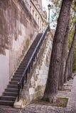 Απότομα σκαλοπάτια στο ανάχωμα και τα δέντρα του Παρισιού Στοκ φωτογραφία με δικαίωμα ελεύθερης χρήσης