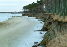 Απότομη ακτή της θάλασσας Στοκ εικόνες με δικαίωμα ελεύθερης χρήσης