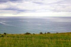 Απότομη χλοώδης ακτή της θάλασσας Στοκ Φωτογραφία