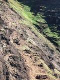 Απότομοι βράχοι ακτών NA Pali Kauai στο νησί, Χαβάη - ίχνος Kalalau Στοκ Εικόνες