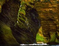 Απότομοι βράχοι θάλασσας, νησί Annenkov Στοκ Εικόνες