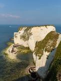 Απότομοι βράχοι κιμωλίας ακτών του Dorset Studland κοντά στη νότια Αγγλία UK Swanage Στοκ Φωτογραφία