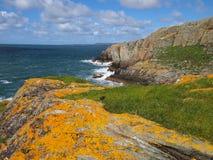 Απότομοι βράχοι με την κίτρινη λειχήνα Στοκ εικόνες με δικαίωμα ελεύθερης χρήσης