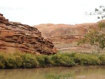 Απότομοι βράχοι ποταμών Στοκ Εικόνες