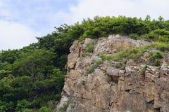 Απότομοι βράχοι που καλύπτονται με το ξύλο Στοκ Εικόνα
