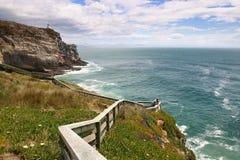 Απότομοι βράχοι στην ακτή του νότιου νησιού, Νέα Ζηλανδία Στοκ εικόνες με δικαίωμα ελεύθερης χρήσης