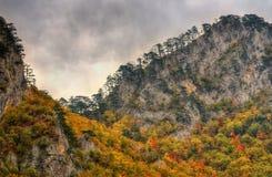 Απότομοι βράχοι στον ποταμό Tara φαραγγιών κοντά στο 5$α  urÄ ` eviÄ ‡ μια γέφυρα της Tara, Μαυροβούνιο - πανόραμα Στοκ Φωτογραφία