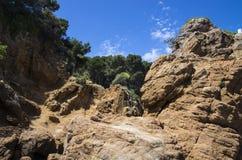 Απότομοι βράχοι της ακτής που διαβρώνεται στοκ εικόνες με δικαίωμα ελεύθερης χρήσης