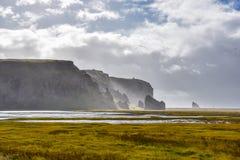 Απότομοι βράχοι της Ισλανδίας της παραλίας Reynisfjara στοκ φωτογραφίες