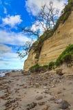 Απότομοι βράχοι ψαμμίτη πέρα από μια σκορπισμένη βράχος παραλία Στοκ φωτογραφίες με δικαίωμα ελεύθερης χρήσης
