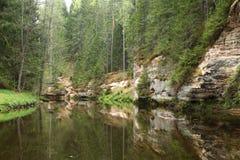 Απότομοι βράχοι ψαμμίτη στην Εσθονία Στοκ Εικόνες