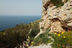 Απότομοι βράχοι Dingli στη Μάλτα Στοκ φωτογραφίες με δικαίωμα ελεύθερης χρήσης