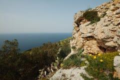 Απότομοι βράχοι Dingli στη Μάλτα Στοκ εικόνες με δικαίωμα ελεύθερης χρήσης