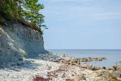 Απότομοι βράχοι Panga στη θάλασσα της Βαλτικής στο νησί Saaremaa, Εσθονία Στοκ Εικόνα