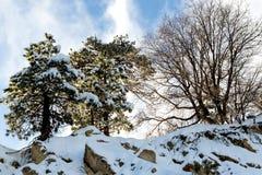 Απότομος βράχος βουνών ερήμων, κλιματική αλλαγή σε νότια Καλιφόρνια, βισμούθιο στοκ φωτογραφία με δικαίωμα ελεύθερης χρήσης