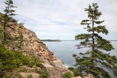 Απότομος βράχος ενυδρίδων στο εθνικό πάρκο ΗΠΑ Acadia Στοκ Εικόνες