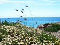 Απότομος βράχος και ωκεανός Στοκ Φωτογραφία