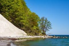 Απότομος βράχος κιμωλίας στο νησί Ruegen στη Γερμανία Στοκ εικόνα με δικαίωμα ελεύθερης χρήσης