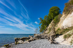 Απότομος βράχος κιμωλίας στο νησί Ruegen Στοκ εικόνες με δικαίωμα ελεύθερης χρήσης