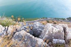 Απότομος βράχος λουλουδιών αγκαθιών επάνω από το δρόμο ασφάλτου και τη λίμνη Στοκ φωτογραφίες με δικαίωμα ελεύθερης χρήσης