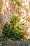Απότομος απότομος βράχος προσώπου βράχου - φυσικό τοπίο της χώρας Τουρκία Στοκ φωτογραφία με δικαίωμα ελεύθερης χρήσης