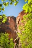 Απότομος βράχος του εθνικού πάρκου Zion στοκ εικόνες με δικαίωμα ελεύθερης χρήσης