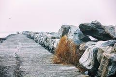 Απότομος βράχος φάρων Thangassery που περιβάλλεται από τους φοίνικες και τα μεγάλα κύματα θάλασσας στην παραλία Kollam Κεράλα, Ιν Στοκ Εικόνες