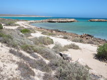 Απότομο σημείο, πιό δυτικότατο σημείο, κόλπος καρχαριών, δυτική Αυστραλία Στοκ φωτογραφία με δικαίωμα ελεύθερης χρήσης