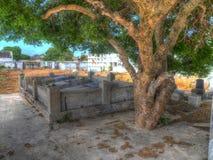 Απόψεις δέντρων νεκροταφείων γύρω από Otrobanda Στοκ Φωτογραφίες