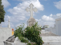 Απόψεις νεκροταφείων γύρω από Otrobanda Στοκ Φωτογραφία