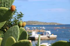 Απόψεις της Νίκαιας Ibiza Άγιος Antoni Στοκ Φωτογραφία
