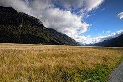 Απόψεις των βουνών και των εγκαταστάσεων της Νέας Ζηλανδίας δ Υ Στοκ Φωτογραφίες