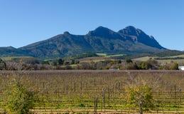 Απόψεις Stellenbosch στη Νότια Αφρική Στοκ φωτογραφία με δικαίωμα ελεύθερης χρήσης