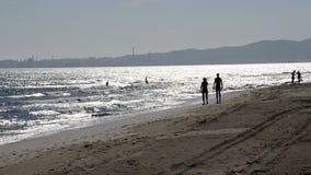 Απόλαυση της θάλασσας το καλοκαίρι απόθεμα βίντεο
