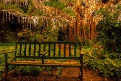 Από με τις νεράιδες, πάρτε ένα κάθισμα στοκ φωτογραφίες με δικαίωμα ελεύθερης χρήσης