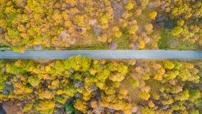 Από πάνω εναέρια τοπ άποψη πέρα από τον ευθύ δρόμο στο ζωηρόχρωμο πορτοκαλί, πράσινο, κίτρινο, κόκκινο δέντρο φθινοπώρου επαρχίας Στοκ Εικόνες