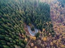 Από πάνω εναέρια τοπ άποψη πέρα από hairpin την οδική κάμψη στροφής στο πορτοκαλί, πράσινο, κίτρινο, κόκκινο δέντρο πεύκων φθινοπ Στοκ φωτογραφία με δικαίωμα ελεύθερης χρήσης